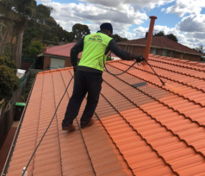 Roof Restoration in Avondale Heights